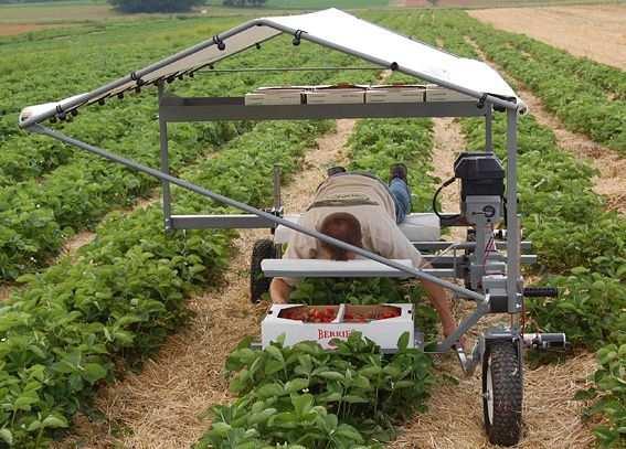 Изобретения для хозяйства своими руками