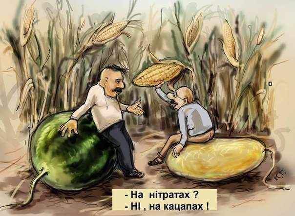 анекдот про урожай