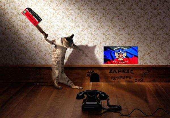Подозреваемый Дадаев уволился из ВВ МВД на следующий день после убийства Немцова - Цензор.НЕТ 7674