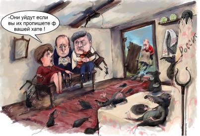Пацюки в Україні